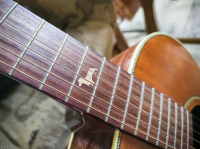 Letní kytarovka