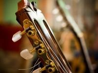 3) Podzimní kytarovka